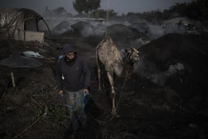 A man walking with a camel amid rounded heaps of black charcoal