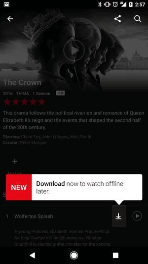 Netflix Offline downloads