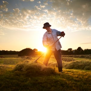 make hay while the sun shines speech