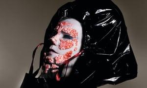 Björk, musician