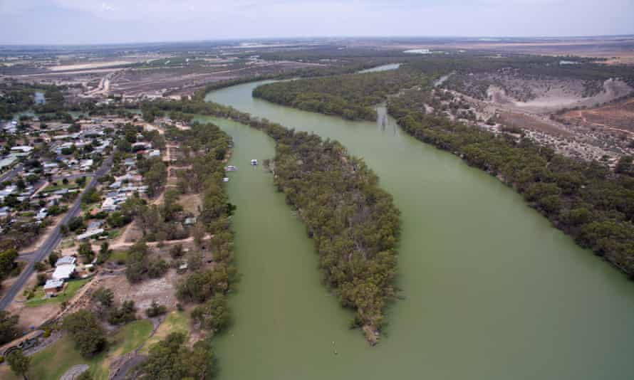 The confluence of the Murray and Darling rivers at Wentworth in NSW. The green colour is due to algal blooms. The Shooters, Fishers and Farmers party want to a federal royal commission into the river.