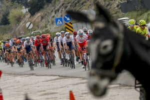 A donkey photobombs the cycling Tour of Turkey in Antalya