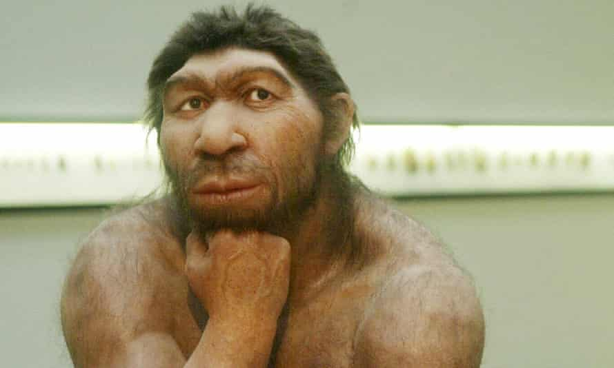 The genes are thought to have spread through modern humans when small groups of pioneers who left Africa met and had sex with Neanderthals already long at home in Eurasia.