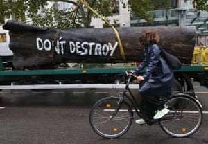 A cyclist passes a protest by Greenpeace activists in Berlin