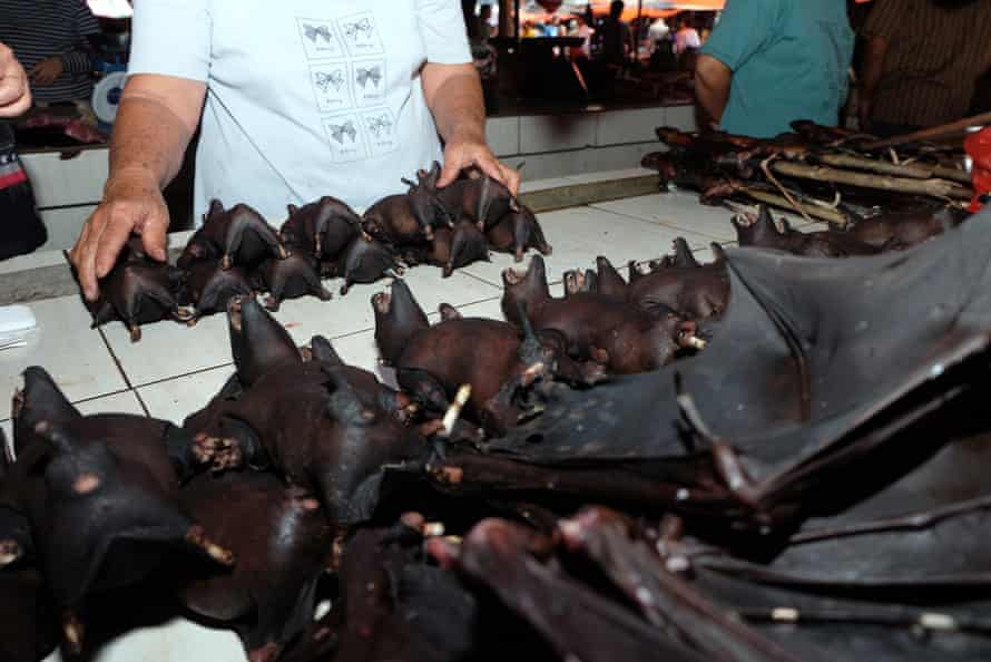 Traders sell bat meat at an Indonesian market, February 2020. Bats have been linked to diseases including Sars, Nipah, Marburg and Ebola