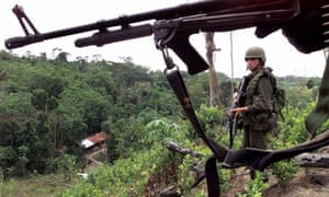 Anti-narcotics police stand in a coca field near La Gabarra, in the Catatumbo region of Colombia. Armed groups have expelled thousands of rural dwellers from their homes, according to the report.