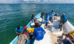 Rangers check licenses as part of the managed access programme in the Port Honduras Marine Reserve.