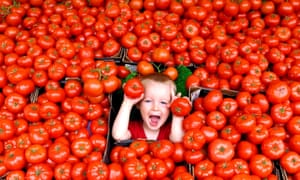 A boy plays in a mass of English beef tomatoes on a fruit and vegetable stall in Brighton