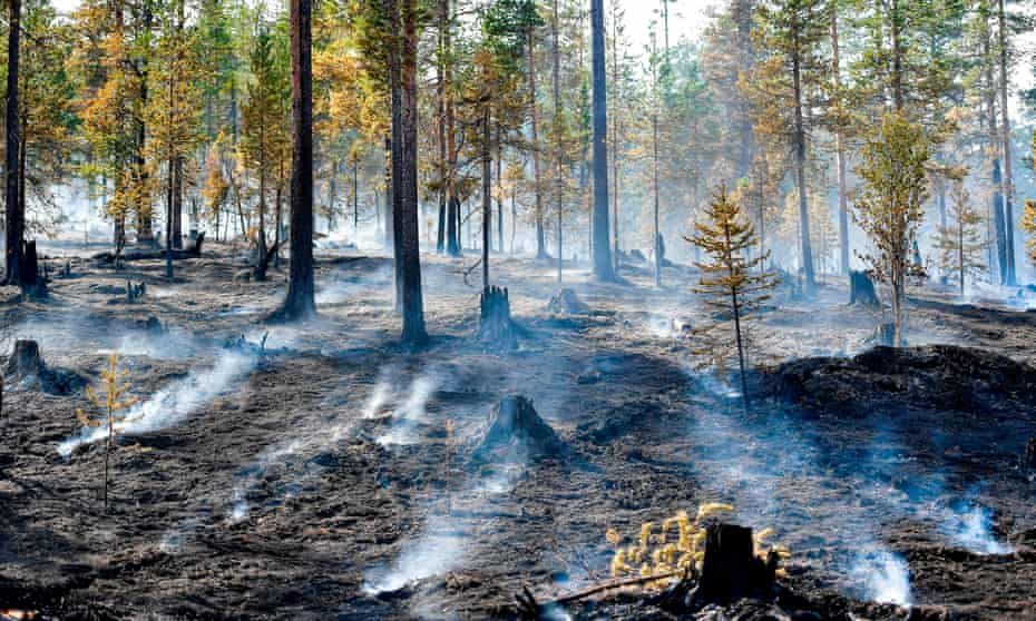 Hot, dry weather caused fires across Sweden as well as in other parts of Europe, Australia and the US.