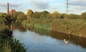 Victorian chimney and a waterway, with a swan on it, at Walthamstow Wetlands, London, UK