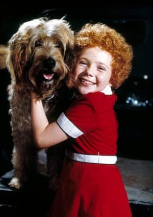 Sandy (Otterhound), Annie, 1982