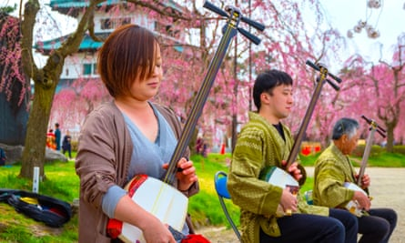 Japanese musicians perform the tradtional insturment the shamisen in Hirosaki Park, Japan.