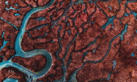 The strange realm: a river delta seen from the air. Chris Beckett's novel reads like Conrad's Heart of Darkness re-imagined by JG Ballard.