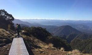 The Lyell Range in Westland, part of Kahurangi national park