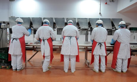 'Everyone's on top of you, sneezing and coughing': life inside Ireland's meat plants