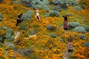 A photoshoot in the poppy fields near Lake Elsinore.