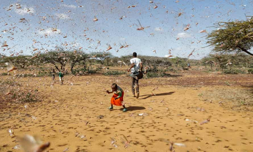 2.1 Million Kenyans Face Starvation as Drought Continues