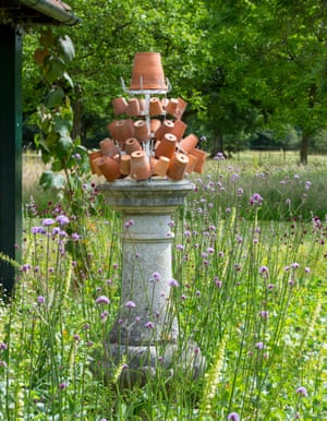Terracotta pots on stand surrounded by Verbena bonariensis.