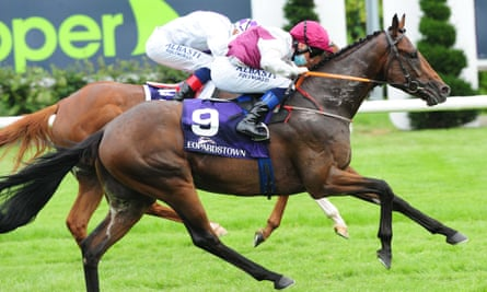 He Knows No Fear (nearside) gets up in the final strides to win at Leopardstown.