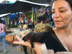 Activist Noga Shanee holds a baby saddle-backed tamarin while an infant pygmy marmoset is on her shoulder