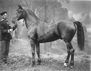1870s – Horse and vizier, photographer unknown A collaboration between the Multimedia Art Museum in Moscow and Yandex, the largest Russian IT company and search engine, the archive will also produce a book and curate several touring exhibitions