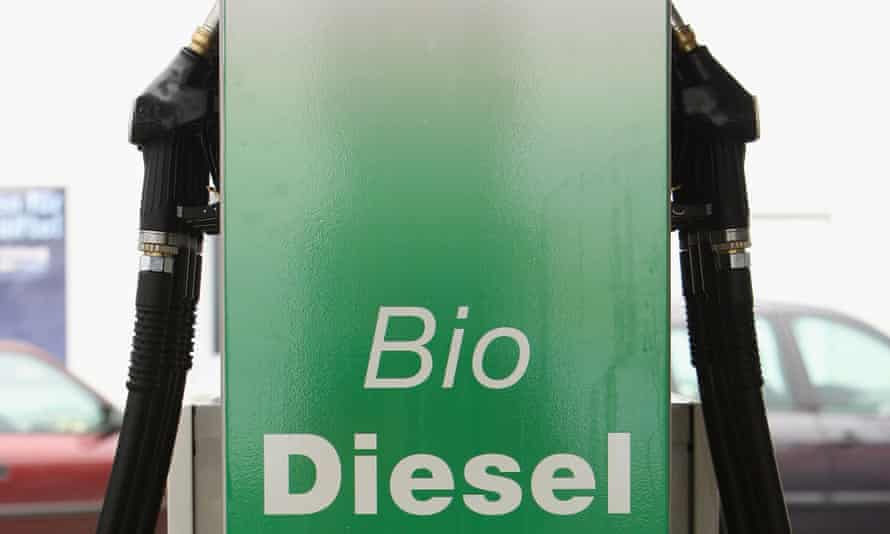 Demand for food-based biofuels, such as palm oil, can drive rainforest destruction, the report emphasises.