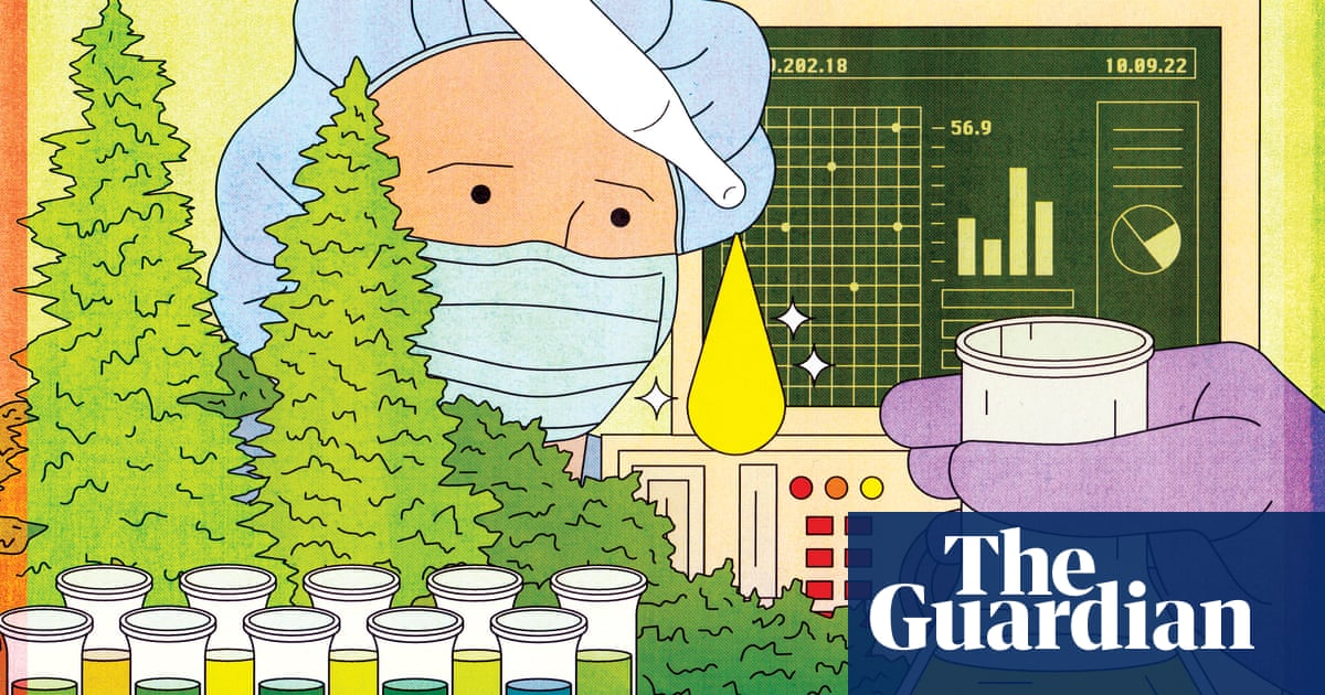 What is CBD? The 'miracle' cannabis compound that doesn't