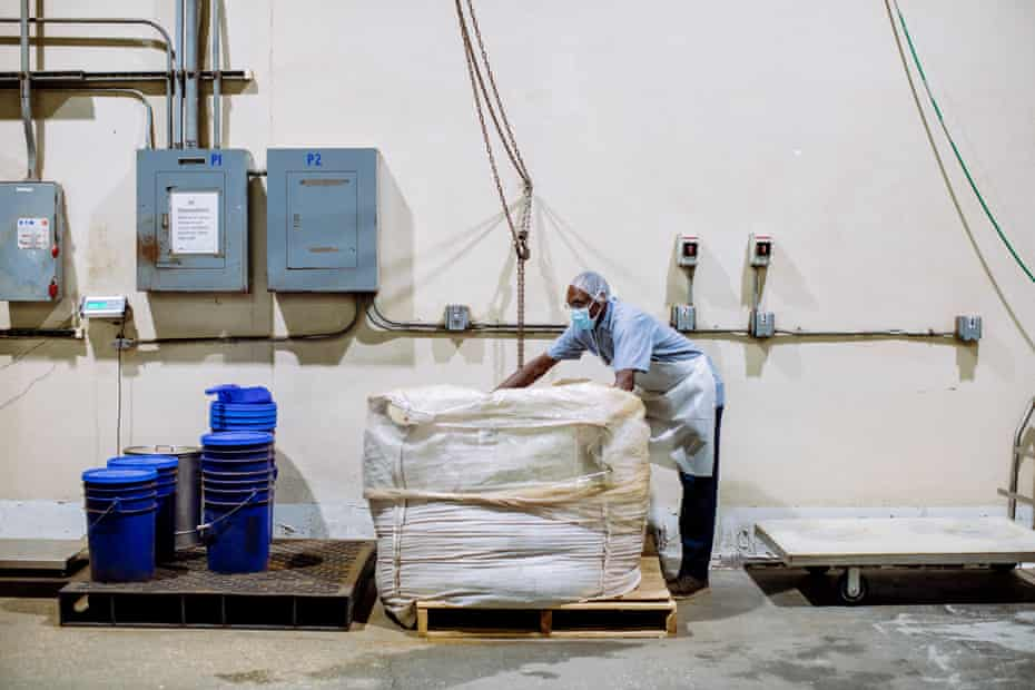 An employee prepares dried palmetto berries for processing at Valensa International, a manufacturer of palmetto berry extract based in Eustis, Florida,.