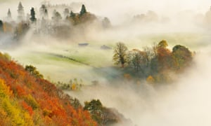 A misty morning over a mixed woodland in autumn, Kinnoull Hill Woodland Park, Perthshire, Scotland, November 2011. Highly commended in the Wild Woods Category of the British Wildlife Photography Awards (BWPA) competition 2013
