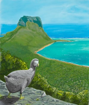Thomas Herbert, who visited Mauritius in the mid-17th century, described the dodo as having eyes like diamonds.