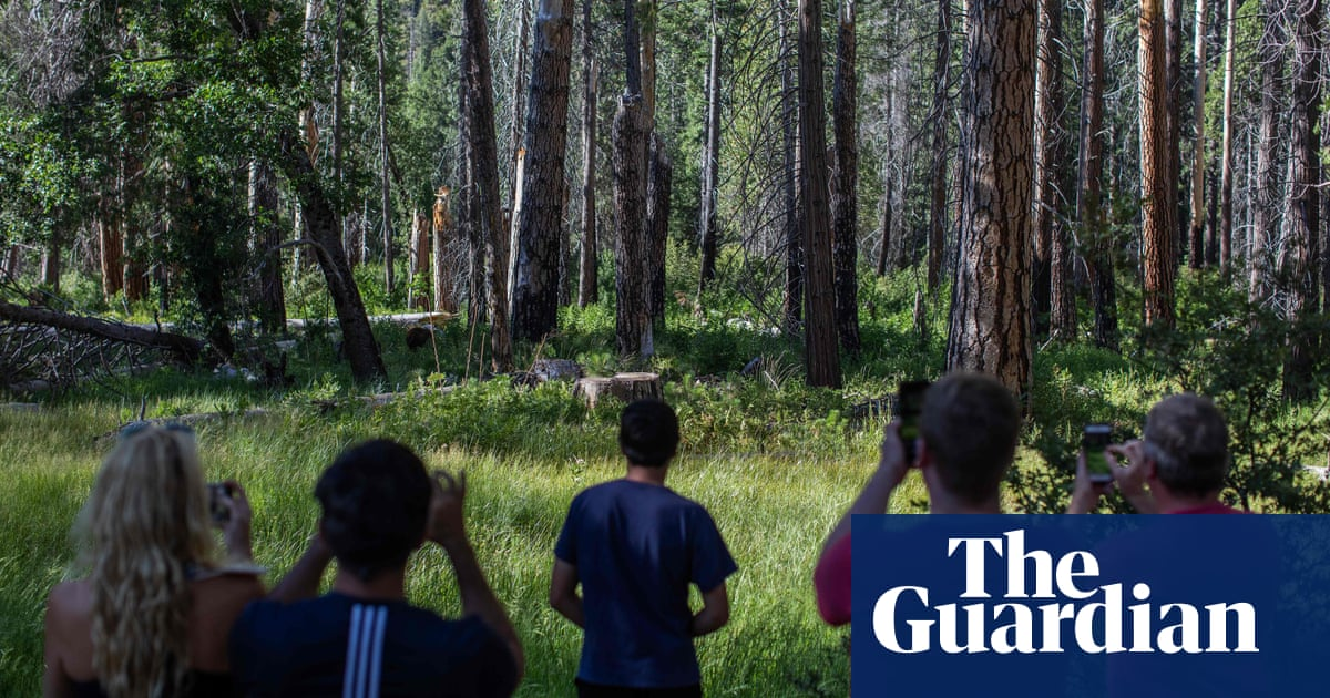 'It's not sustainable': overcrowding is changing the soul of US national parks