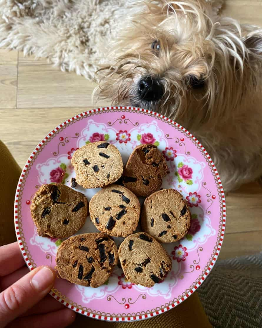 Felicity Cloake's liver-chip cookies, from Henrietta Morrison's book Tasty Treats for Happy Dogs.