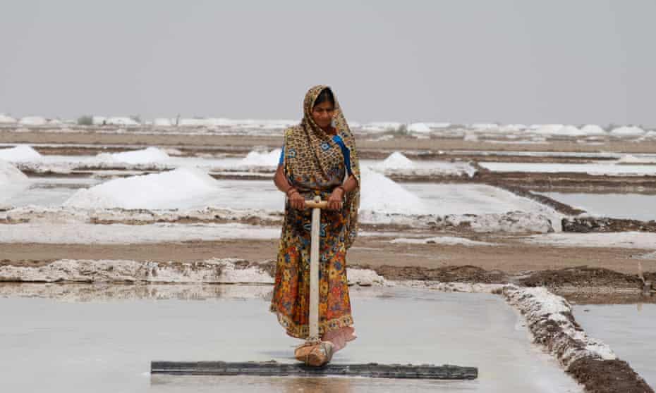 Farming Salt in Surendranagar