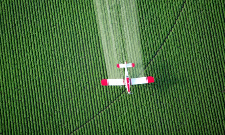 WHO scientists have said the herbicide 2-4,D shows some characteristics that could be linked to cancer.