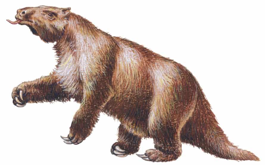 Artist's impression of Megatherium