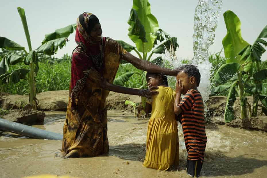 Two children and their mother play in a muddy pool of water in a banana plantation.