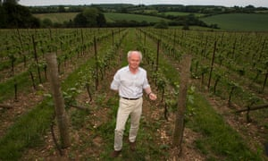 Nicholas Coates at the Wooldings vineyard in Whitchurch, Hampshire.