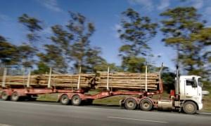 Logs being transported in Launceston in northern Tasmania