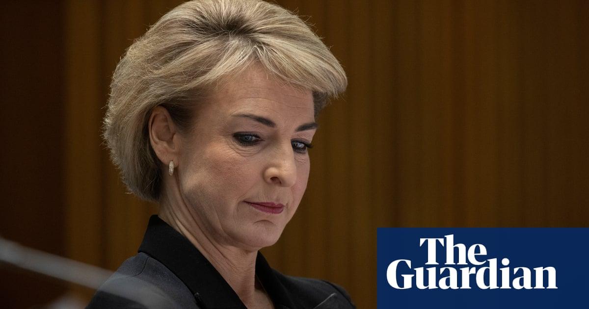 Michaelia Cash 'to consider' concerns over prosecution of ATO whistleblower Richard Boyle