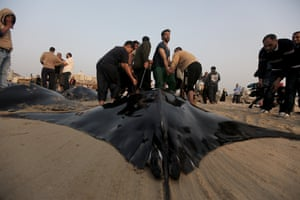 Palestinian fishermen pull out a catch of devil ray fish onto a beach.