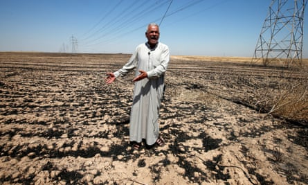 Local farmers claim more crops have been burned than government figures reflect