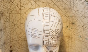 Close up of Phrenology head diagram<br>AHXPNN Close up of Phrenology head diagram