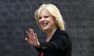 Anna Soubry, who urged Theresa May to side with 'sensible, moderate wise owls in the cabinet'.