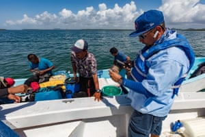 Marine rangers from the Toledo Institute for Development and Environment (Tide) check the licences of fishermen in the Port Honduras Marine Reserve (PHMR) in southern Belize. Since 2016 the country's managed access programme restricts all of Belize's 3,000 fishers to two designated fishing zones, as part of wider efforts to secure livelihoods and protect the marine environment. The rangers take turns to parol the reserve from their station at Abalone Caye. A particular challenge are night-time incursions from neighbouring Guatemala.