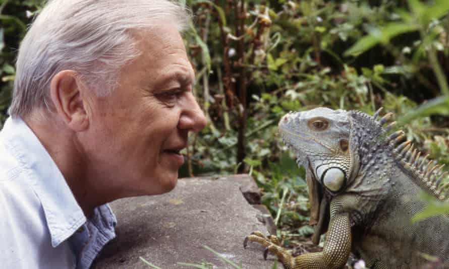 Sir David Attenborough with an iguana from Living With Dinosaurs.