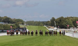 A big field of jockeys spread across the Goodwood straight in the Stewards' Cup on Saturday.