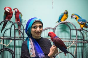 Cairo, Egypt: Nada Abdullah is a bird trainer at the city's Parrot Academy. The organisation also acts as a hotel for travelling bird owners