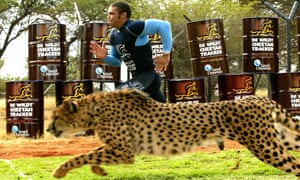 Bryan Habana races a cheetah in 2007