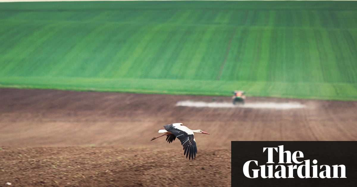 EU in 'state of denial' over destructive impact of farming on wildlife