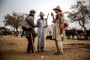 A group of Fulani pastoralists exchange money after cattle transactions at Illiea cattle market, Sokoto state